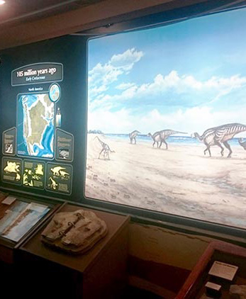 Picture of Trek through Time 165 million years mural display