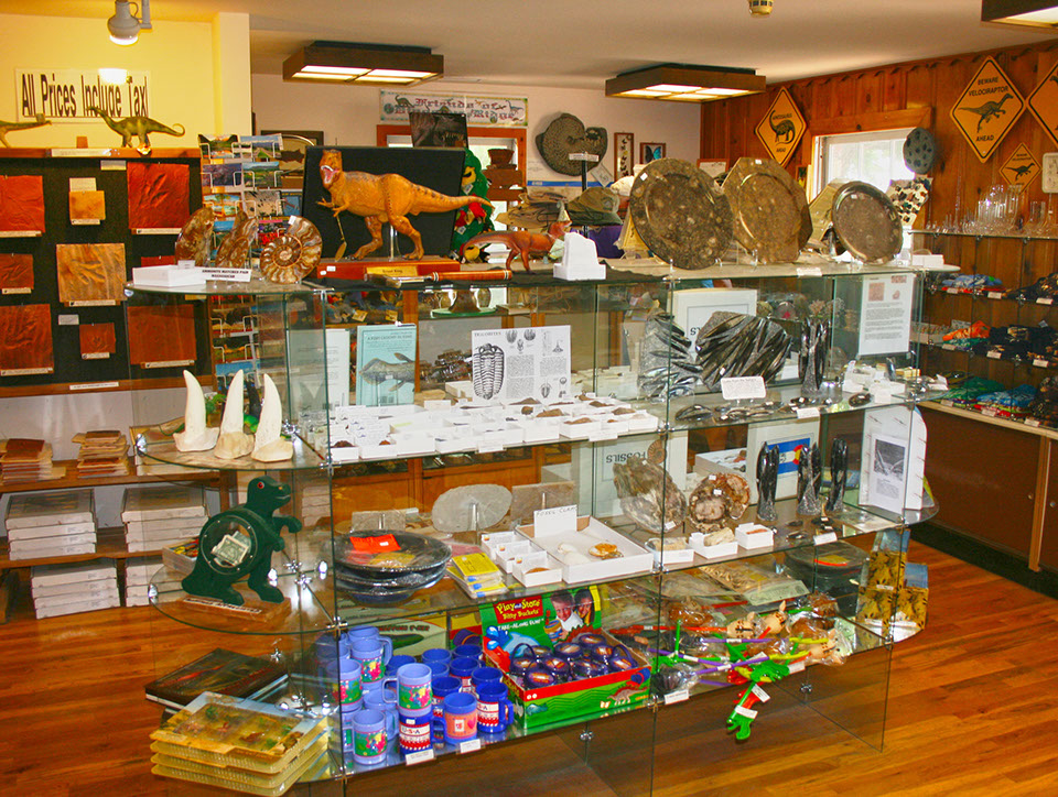 Picture of main Visitor center gift shop at Dinosaur Ridge