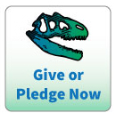 Donate to Dinosaur Ridge Now