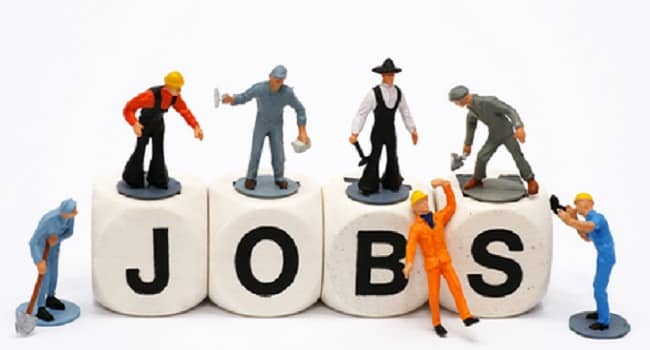 CRIDA Young Professional Recruitment