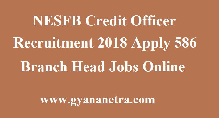 NESFB Credit Officer Recruitment