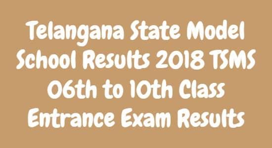 Telangana State Model School Results 2018