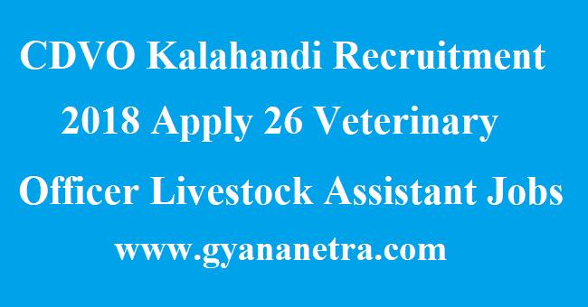 CDVO Kalahandi Recruitment