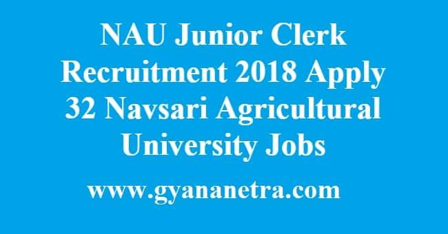 NAU Junior Clerk Recruitment