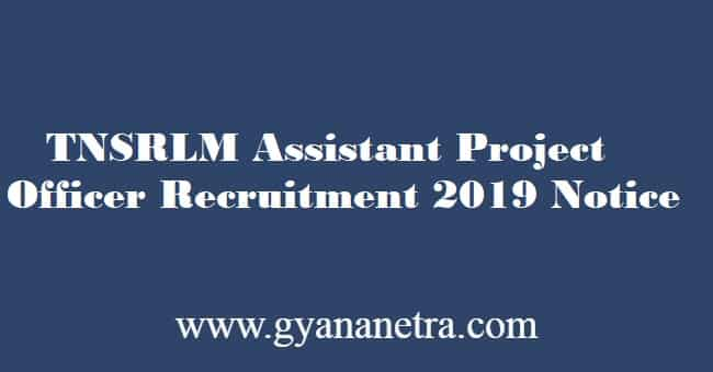 TNSRLM Assistant Project Officer Recruitment 2019