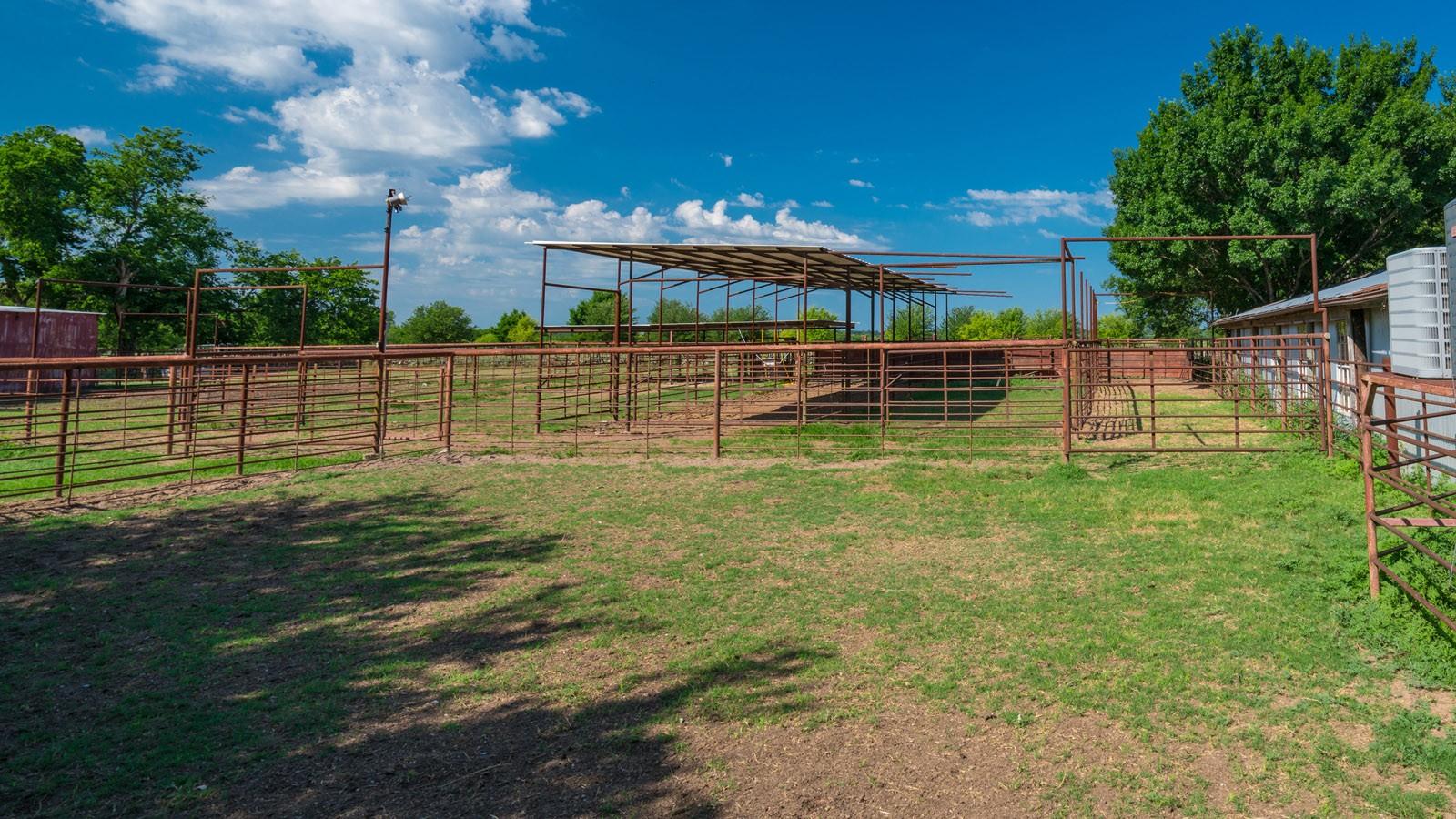 grassy livestock corral area