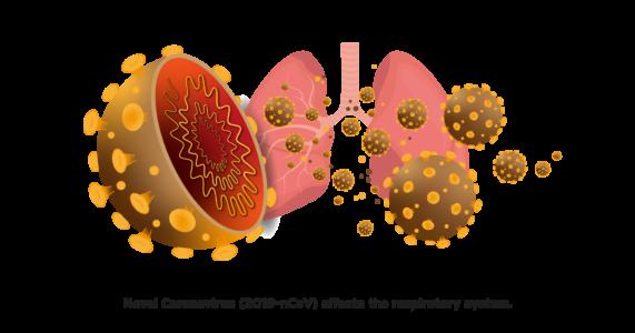 Các loại thuốc tiềm năng chữa dịch Covid-19