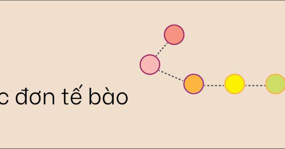 Ứng dụng học sâu trong sinh học đơn tế bào
