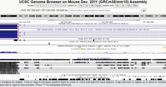 Một cách thiết kế mồi cho phản ứng PCR