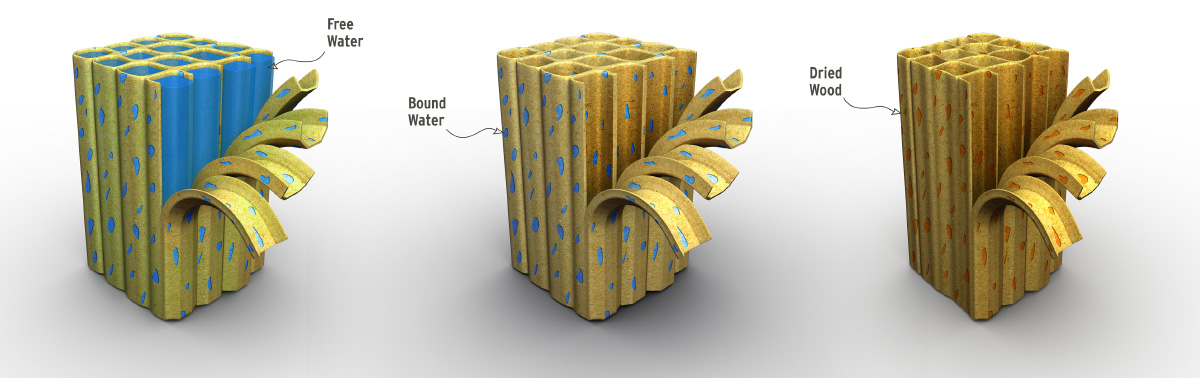 free water bound water technical illustration