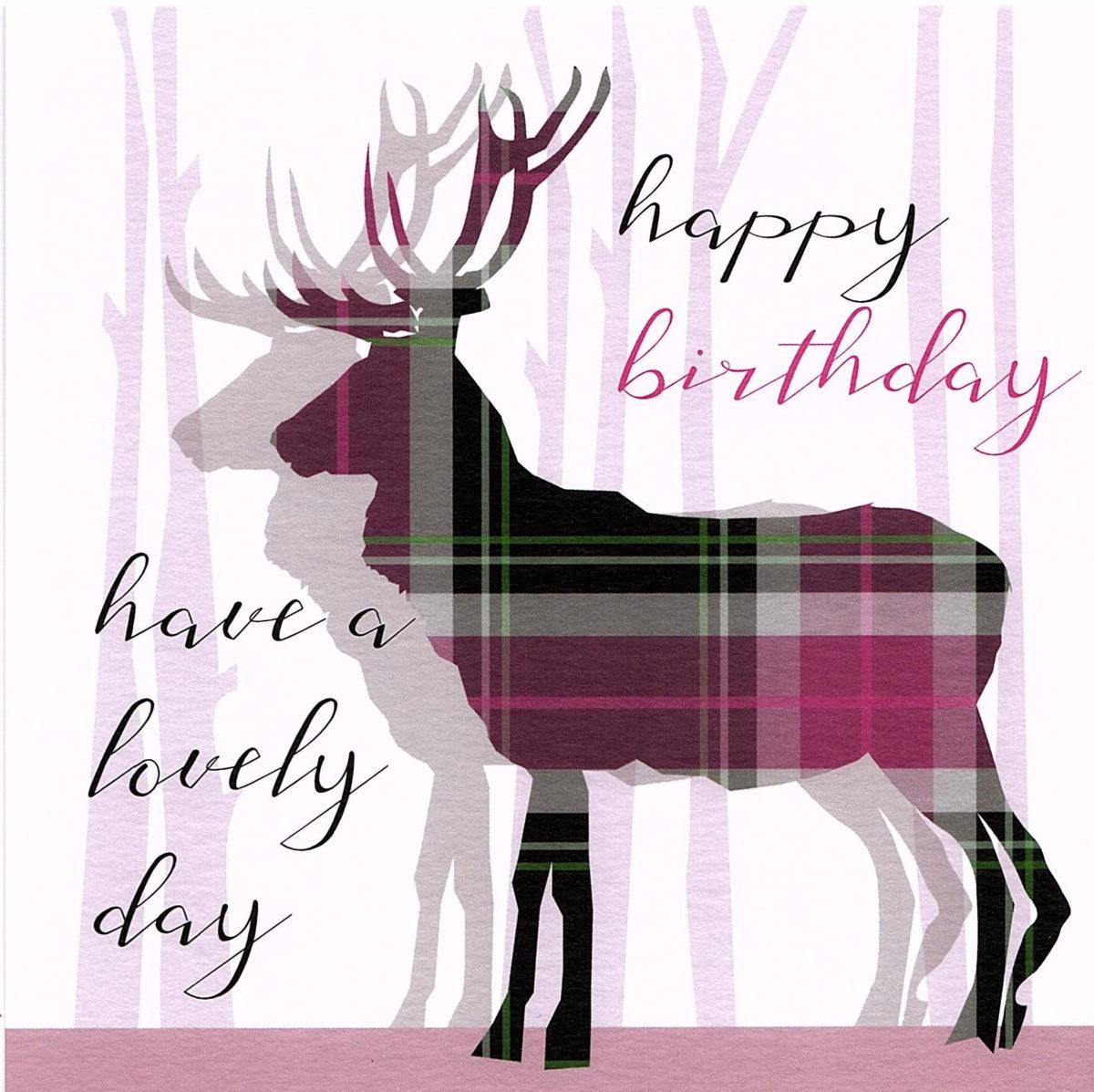 Happy Birthday Stag