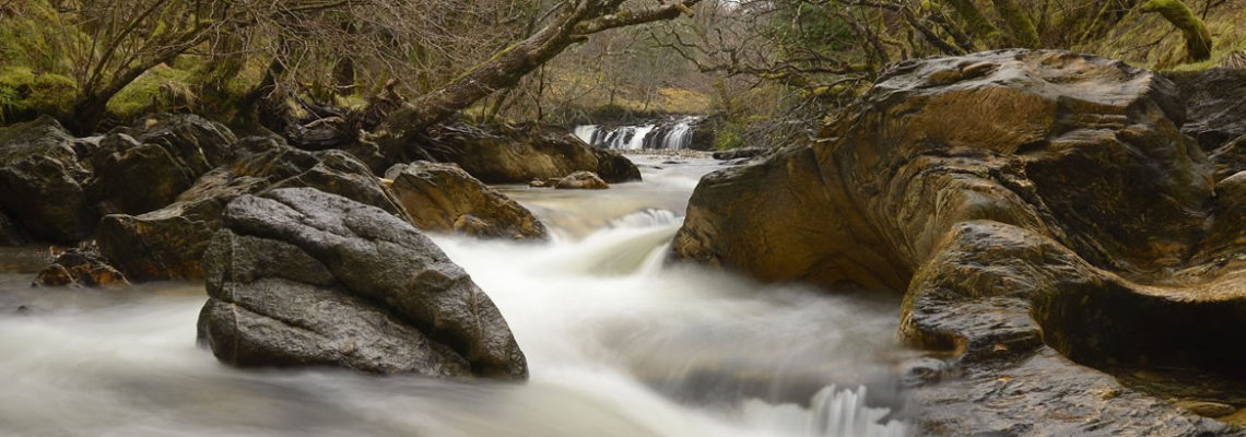 Header-River-1140×400