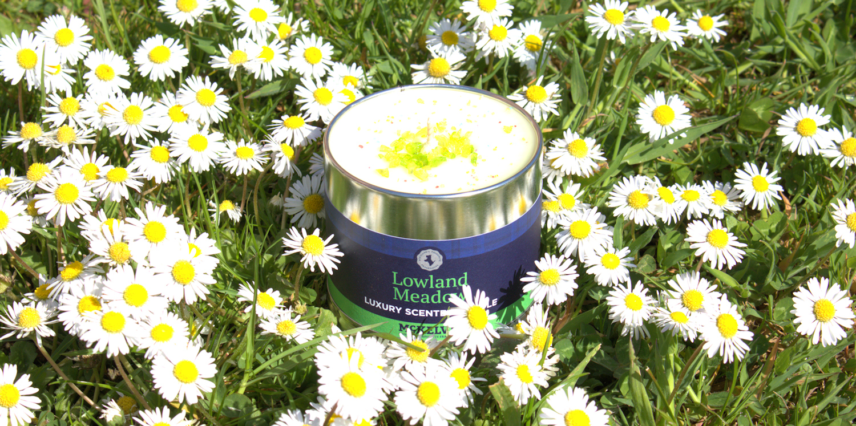 McKelvie Candles Header Image