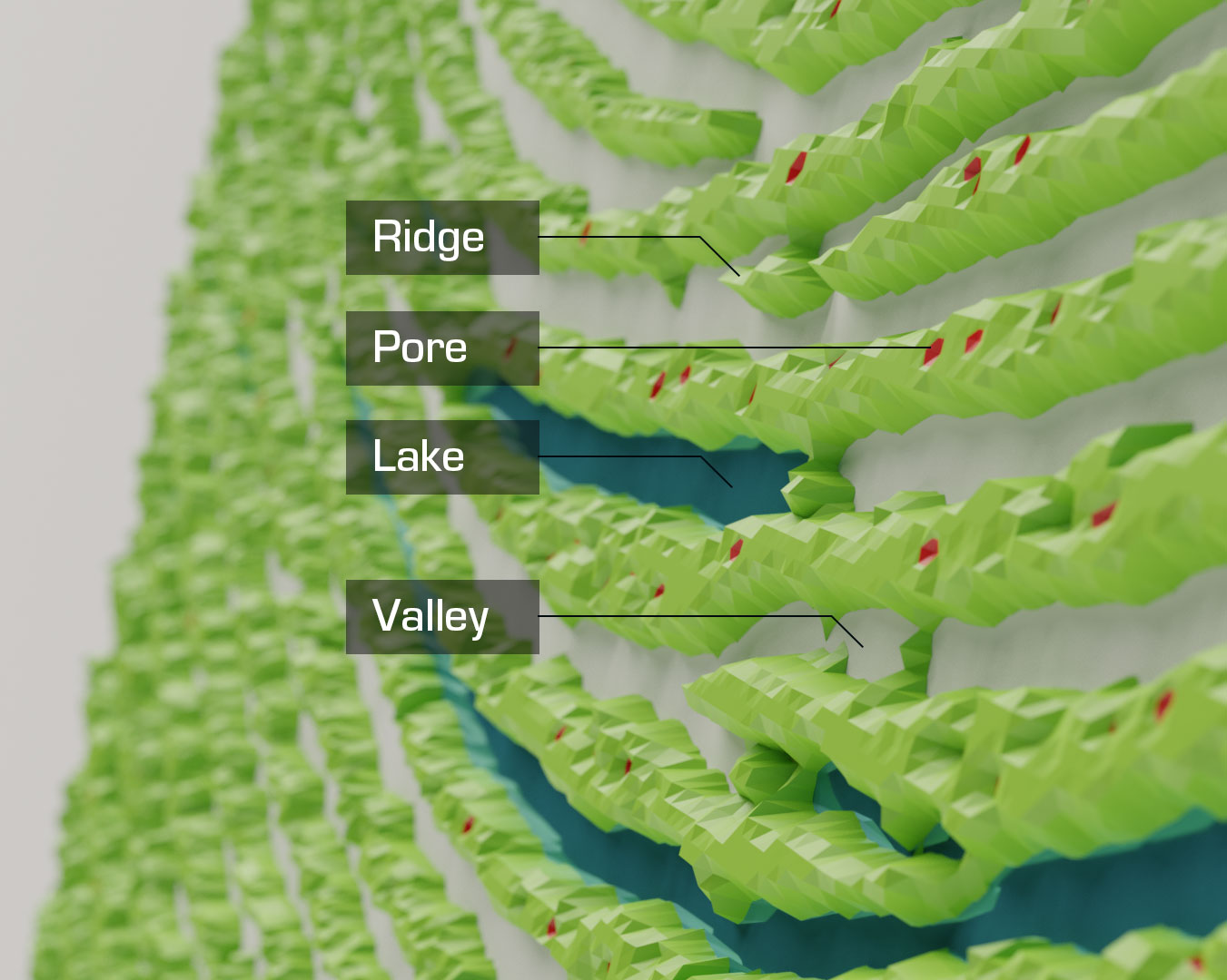 An image pointing out ridges, pores, lakes, and valleys on a fingerprint.
