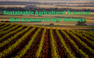 Sustainable Agricultural Practices that Farmers Should Embrace