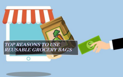 Top Reasons to Use Reusable Grocery Bags