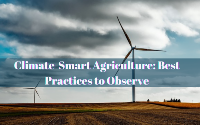 Climate-Smart Agriculture: Best Practices to Observe