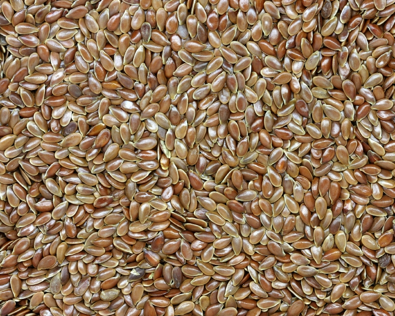 Flax – What is in Shakeology?