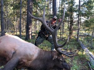 help with back pain, archery elk, idaho archery elk, idaho bull elk