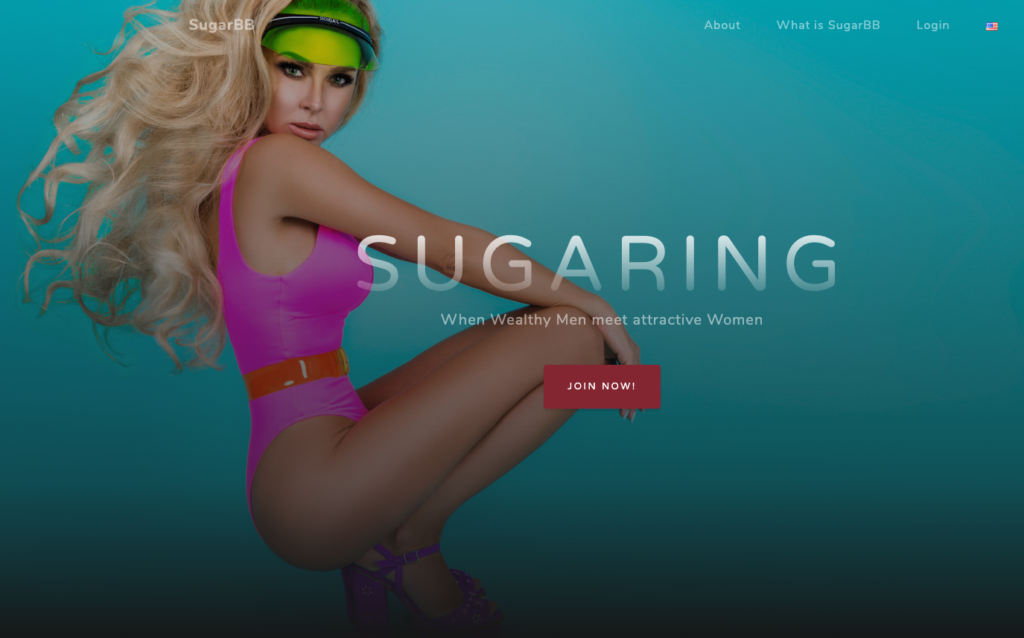 sugar daddy website