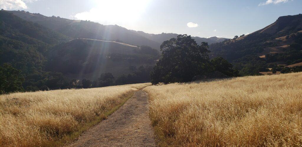 Napa River Trail, Vine Trail, Sunol, East Bay Regional Parks. backgrounds
