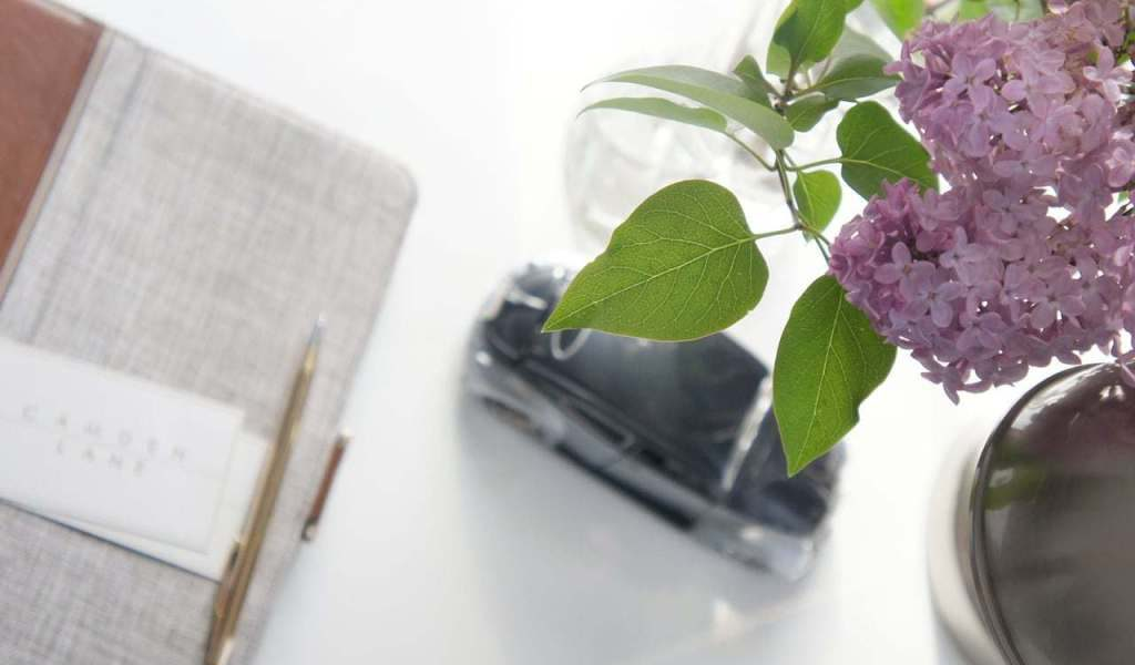 A spring of lilac beside our interior design's inspiration journal