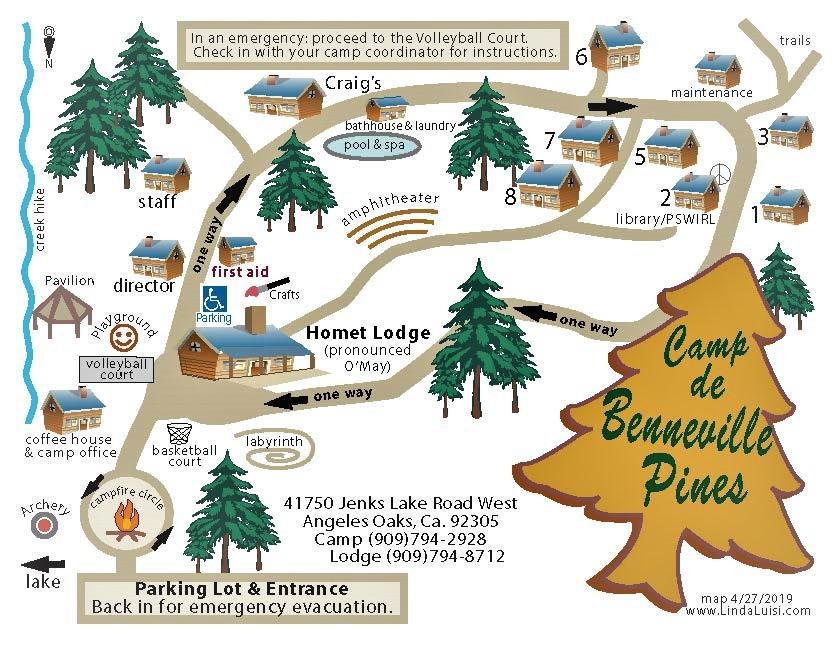 Camp de Beneville Pines