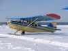Aeroncal Model 7 Champ