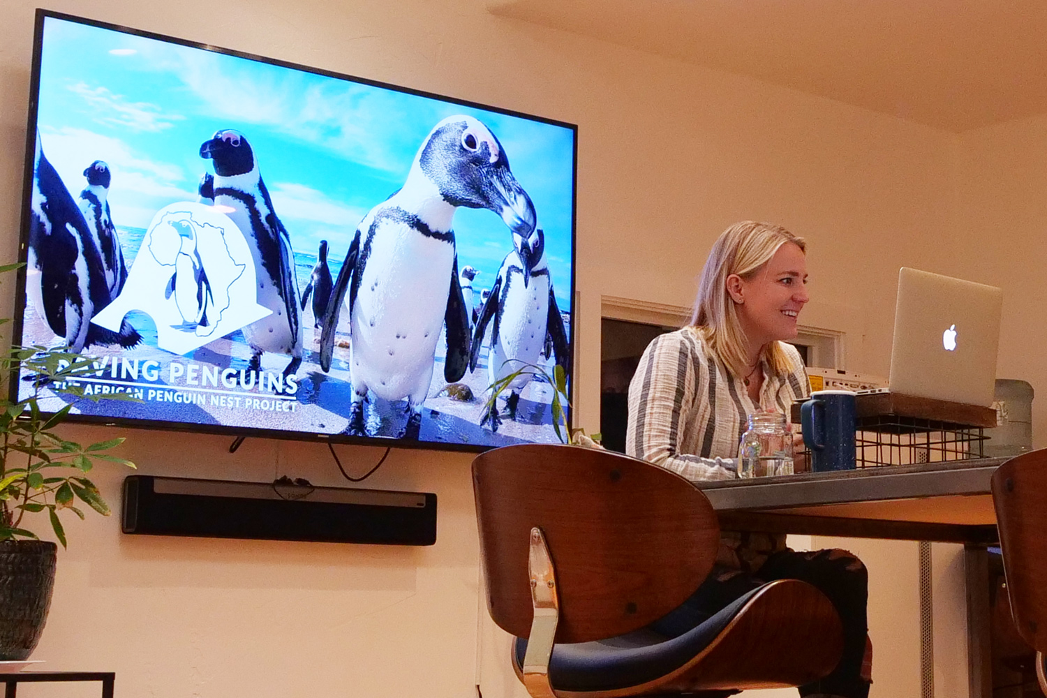 8 Tips for a Great Live Stream at your Zoo, Aquarium, or Museum