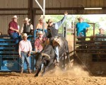 Senior Bull Riding Scheduled