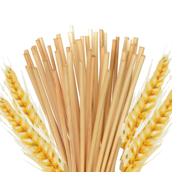 Biodegradable-Hay-Straws-Natural-Wheat-Straws-for-Drinking