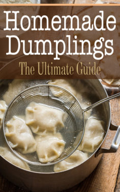 Homemade Dumplings: The Ultimate Guide