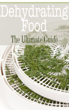 Dehydrating Food: The Ultimate Guide