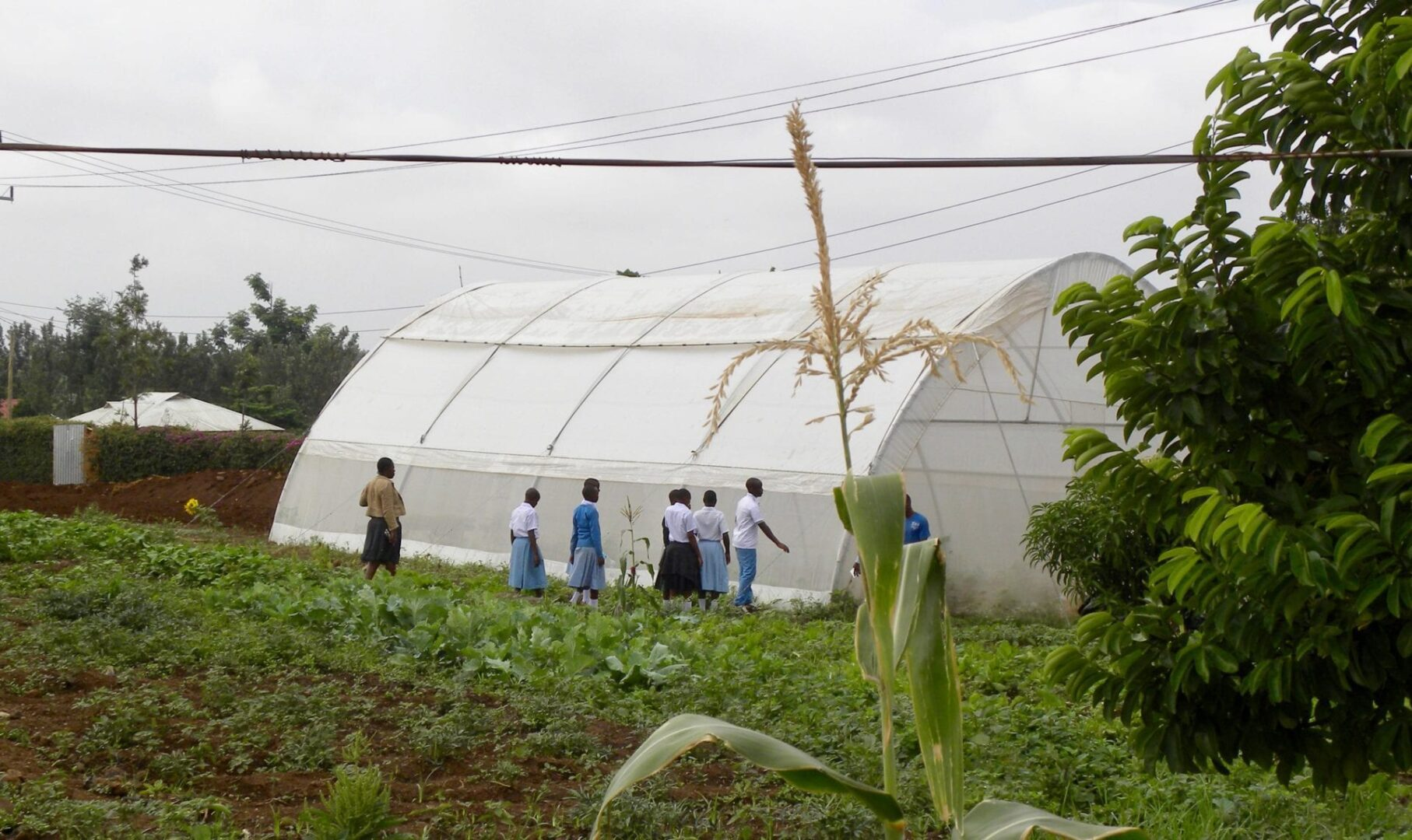 KIWOCE Open School | Educating Youth in Tanzania