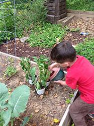 GardeningPreschool_sm