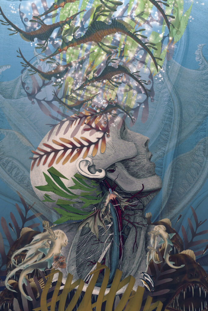 An artwork showing a person underwater with various plants surrounding them.