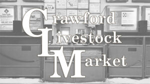 Regular Cattle Sale & Special Feeder Sale @ Crawford Livestock Market