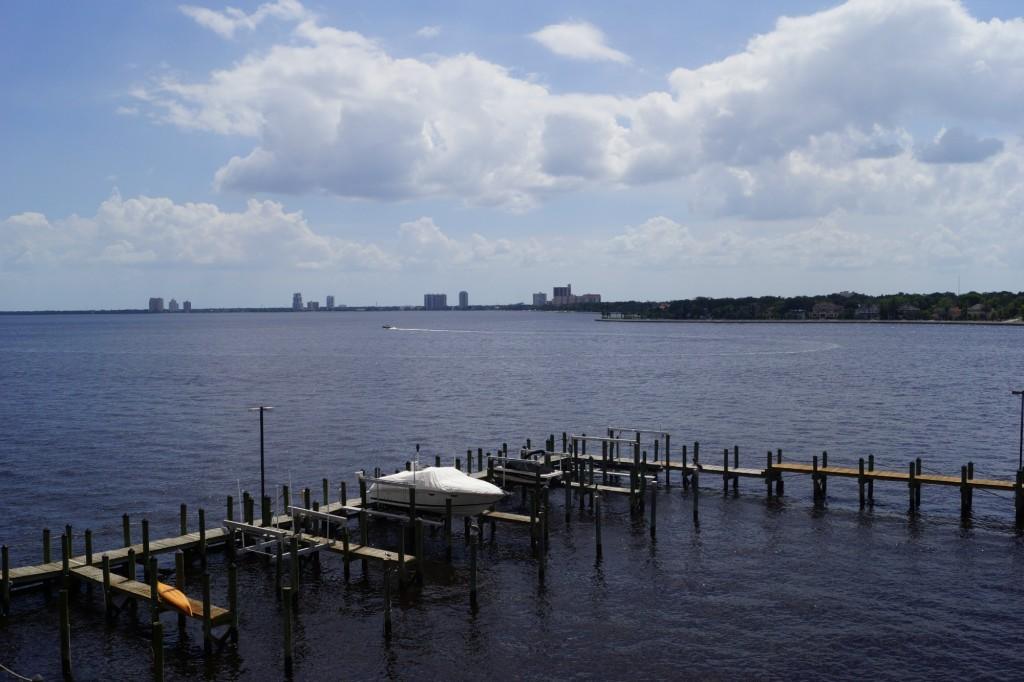 2 Adalia Waterfront Davis Islands