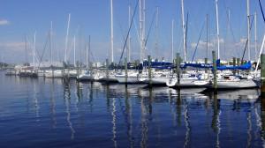 Tampa Waterfront Community
