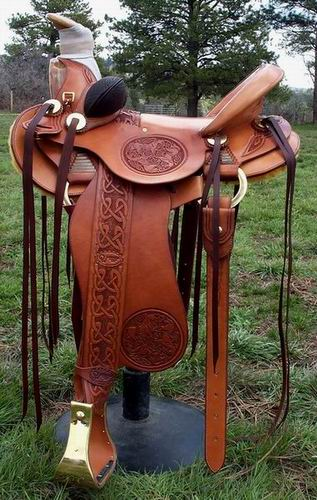 TH 3B Visalia Saddle