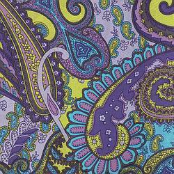 Cowboy Images Turquoise & Violet Paisley