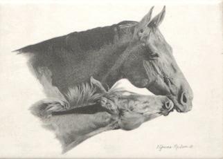 Mare and Foal Glitche