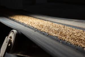 Food & Beverage Manufacturing Worker's Comp