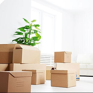 Move Out Cleaning Services Vancouver BC