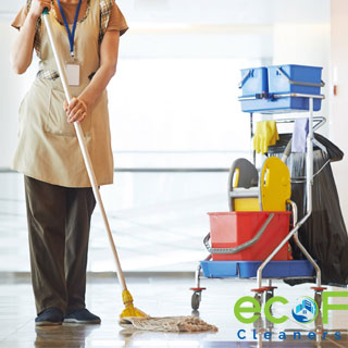 apartment cleaners Port Moody