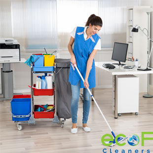 apartment cleaners Surrey BC