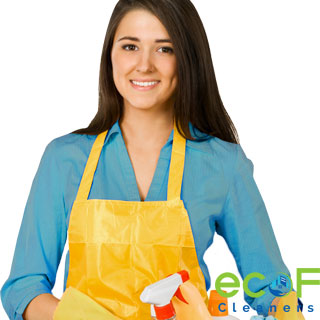 oven bathroom wall window washing special request cleaning company Delta BC