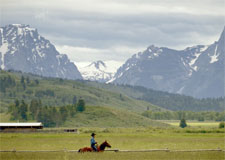 Thumbnail for Ariat Western Live the Life You ♥