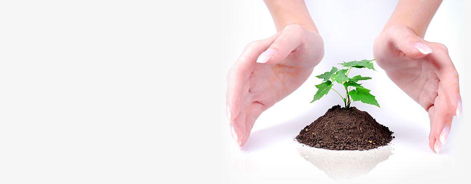 Grow Your Retirement Account