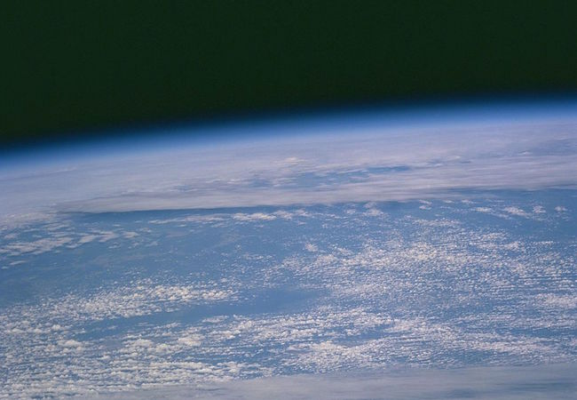 Photo of Biological annihilation on earth accelerating